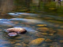 Kalme vijver op een rivier stock foto