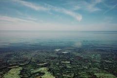 Kalme vlakke overzeese kust van het Kaspische overzees bij middag stock foto's