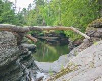 Kalme wateren op rotsachtige bosoever van rivier in het Park van de de Wildernisstaat van Stekelvarkenbergen in het Hogere Schier stock foto's