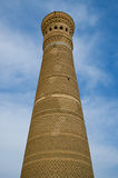 Kalon Minaret Tower in Bukhara Stock Photography