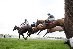 Horse Racing. Kalondra 1st Blue-yelow seen here jumping the 2nd last at cheltenham races 16-12-17 Stock Images