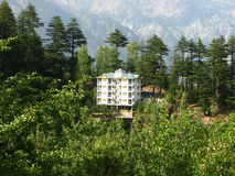 Kalpa Valley, Himachal, Pradesh, India royalty-vrije stock afbeelding