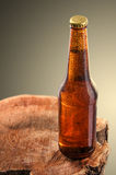 Kalte Bierflasche Stockfotografie