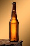 Kalte Bierflasche Lizenzfreie Stockfotos