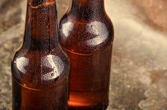 Kalte Bierflaschen Neues Bierflaschekonzept Lizenzfreies Stockbild