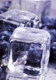 Kalte Blaubeeren Stockbild