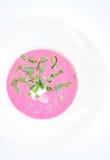 Kalte Mangoldsuppe (Holodnik) Kalte Suppe gemacht von den roten Rüben, von den Gurken, von den Eiern, von den Kräutern und vom Jo Lizenzfreies Stockbild