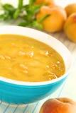 Kalte Pfirsich-Suppe stockfotos