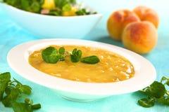 Kalte Pfirsich-Suppe lizenzfreie stockfotografie