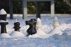 Kalte Schach-Spiele 4 Lizenzfreie Stockbilder