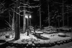 Kalte schneebedeckte Nacht stockbild