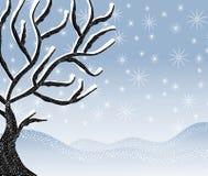 Kalte Snowy-Winter-Baum-Szene Lizenzfreie Stockbilder