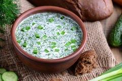 Kalte Sommersuppe mit Gemüse, okroshka Russische Artküche Lizenzfreie Stockbilder