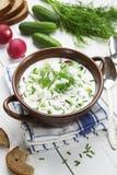 Kalte Sommersuppe mit Jogurt und Gemüse Lizenzfreies Stockbild