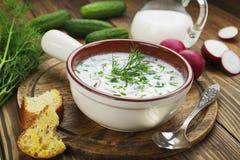 Kalte Sommersuppe mit Jogurt und Gemüse Lizenzfreie Stockfotografie