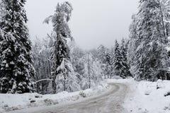 Kalte Straße in einem verschneiten Winter Stockbilder