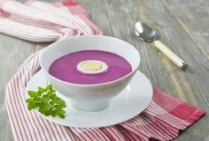 Kalte Suppe der roten roten Rübe Stockbild