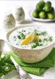 Kalte Suppe der Sommergurke mit Grüns und gekochten Eiern Stockbild