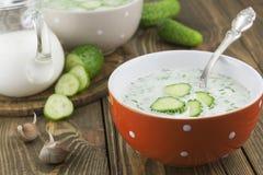 Kalte Suppe mit Gurken, Jogurt und frischen Kräutern Stockfotografie