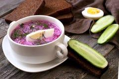 Kalte Suppe mit roten Rüben, Gurken, Dill und Sauerrahm Lizenzfreie Stockbilder