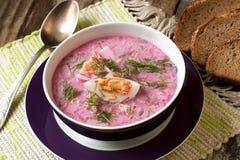 Kalte Suppe mit roten Rüben, Gurken, Dill und Sauerrahm Stockbild
