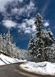 Kalte und schneebedeckte Winterstraße Stockbilder