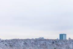 Kalter blauer Himmel über Apartmenthaus und Holz Lizenzfreies Stockfoto