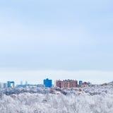 Kalter blauer Himmel über Stadt- und Schneeholz im Winter Stockfoto