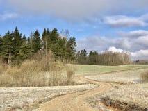 Kalter Frühling in Lettland April 2017 Lizenzfreies Stockbild