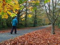 Kalter Herbst-Tag Stockbild