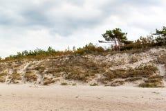 Kalter Herbstmorgen der Ostsee-Küste auf dem Strand Buntes Abnutzungland küste Stockfotos