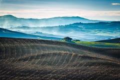 Kalter Morgen über toskanischen Feldern stockfoto