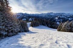 Kalter Morgensonnenschein in den schneebedeckten Alpen Stockfotos
