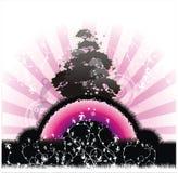 Kalter rosafarbener Morgen Stockbilder