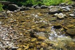 Kalter sauberer moutain Fluss, der auf den Steinen hetzt Stockfotos