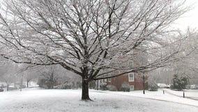 Kalter Schnee in der Nachbarschaft stock video