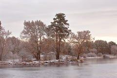 Kalter schneebedeckter Morgen auf dem See Spätherbst Jagd Bäume auf Seeufer lizenzfreie stockfotos