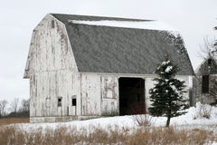 Kalter Tag des Winters Lizenzfreie Stockbilder