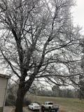 Kalter trostloser Tag im Winter lizenzfreie stockfotos