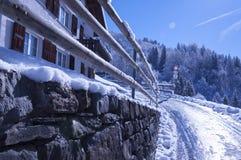 Kalter Winter Lizenzfreies Stockbild