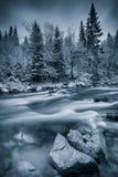 Kalter Winter nahe einem Fluss Stockbild