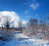Kalter Winterabend Stockbilder