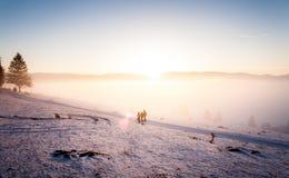 Kalter Wintersonnenuntergang mit Leuten Stockbild