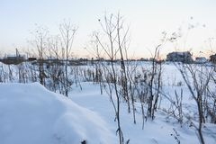 Kalter Wintertag Stockfotos