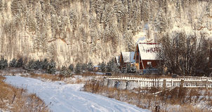 Kalter Winterwaldlandschaftsschnee stockfotos
