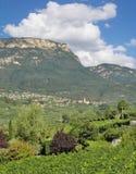 Kaltern ein der Weinstrasse, Süd-Tirol, Italien stockfoto
