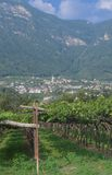 Kaltern,south Tyrolean Wine Route,Italy Royalty Free Stock Photo