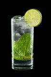 Kaltes alkoholisches Cocktail Stockbild
