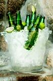 Kaltes Bier Stockbild