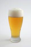 Kaltes Bier in bereiftem Glas Lizenzfreies Stockfoto